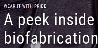 """A Peek Inside The World Of Biofabrication"" - Fusion"