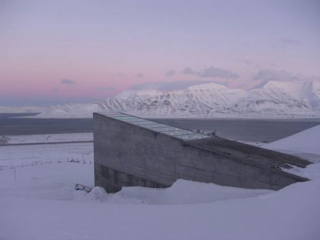 global_seed_vault_mari-tefre-800x600